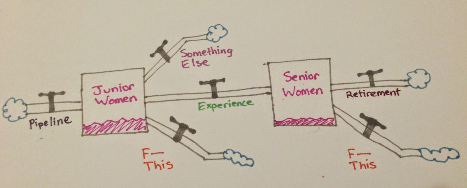 pipeline flows into a stock of Junior women. Outflows of Something Else and F This lead nowhere, while an outflow called Experience leads to a stock of Senior Women. Outflows from here are retirement and F This.