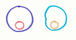 picture of purple with orange circle, blue with peach circle.